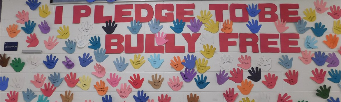 Bully Free School Project